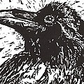 Raven by Julia Forsyth