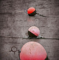 Red Buoys  Print by Svetlana Sewell