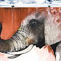 Red Elephant Print by Anthony Burks Sr