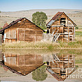 Reflection of an Old Building Print by Donna Van Vlack