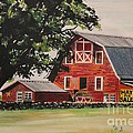 Rhode Island Red Barn Print by Carolyn Valcourt