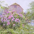 Rhododendrons by a watermill Print by George Marks