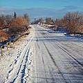 Road In Winter by Gabriela Insuratelu