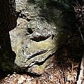 Rock Face Print by Joel Deutsch