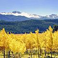 Rocky Mountain Park Colorado Print by James Steele
