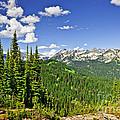 Rocky Mountain View From Mount Revelstoke by Elena Elisseeva