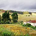 Ruin In Countryside by Carlos Caetano