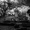 Ruins Of Warwick In Black And White by Laura George