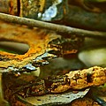 Rust Abstraction by Odd Jeppesen