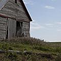 Rustic Barn Still Standing by Wilma  Birdwell