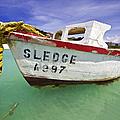 Rustic Fishing Boat Of Aruba II by David Letts