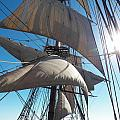 Sails And Sunshine by L Jaye Bell