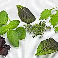 Salad Greens And Spices by Joana Kruse