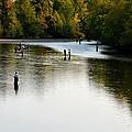 Salmon Hunting Skok Style by Mark Bowmer