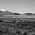 San Francisco Peaks by Gilbert Artiaga