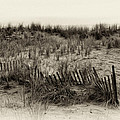 Sand Dune In Sepia by Bill Cannon