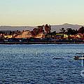 Santa Cruz Boardwalk  by Garnett  Jaeger