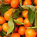 Satsumas by Tom Gowanlock