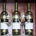 Sauvignon Blanc by Viktor Savchenko
