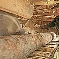 Sawmill by Bjorn Svensson