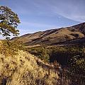 Scenic View Of The Yakima Valley by Sisse Brimberg