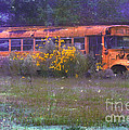 School Bus Out To Pasture by Judi Bagwell
