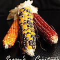 Season's Greetings- Thanksgiving Card No. 1 by Luke Moore