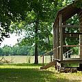 Settlers Cabin Arkansas 4 by Douglas Barnett