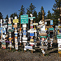 Sign posts forest in Watson Lake Yukon Print by Mark Duffy