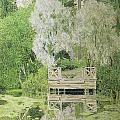Silver White Willow Print by Aleksandr Jakovlevic Golovin