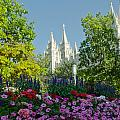 Slc Temple Flowers by La Rae  Roberts