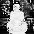 Small Golden Buddha Statue In Monastery Of Ten Thousand Buddhas Sha Tin New Territories Hong Kong by Joe Fox
