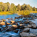 Smooth Rapids by Robert Bales