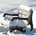 Snow Covered Park Bench