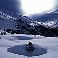 Snow Mountain Austria  by Colette V Hera  Guggenheim