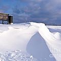 Snowy Day by Heiko Koehrer-Wagner