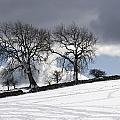 Snowy Field, Weardale, County Durham by John Short