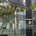 Solar-powered Street Light In Daejeon Print by Mark Williamson