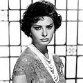 Sophia Loren, Circa 1950s by Everett
