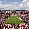 South Carolina View From The Endzone At Williams Brice Stadium by Replay Photos