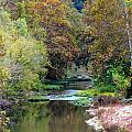 South Harpeth by Kay Sawyer