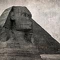 Sphinx Vintage Photo by Jane Rix