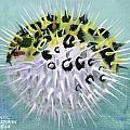 Spike Print by Arleana Holtzmann