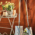Spring Gardening by Amanda And Christopher Elwell