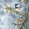 Spring Thaw by Patricia Pushaw