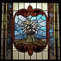 Stained Glass Lc 20 by Thomas Woolworth