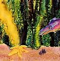 Star Fish by Carolyn Doe