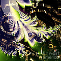 Steampunk Abstract Fractal . Square . S2 by Wingsdomain Art and Photography