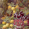 Still Life With Fruit by Oliver Clare