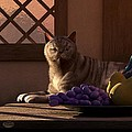 Still Life With Wine Fruit And Cat  by Daniel Eskridge